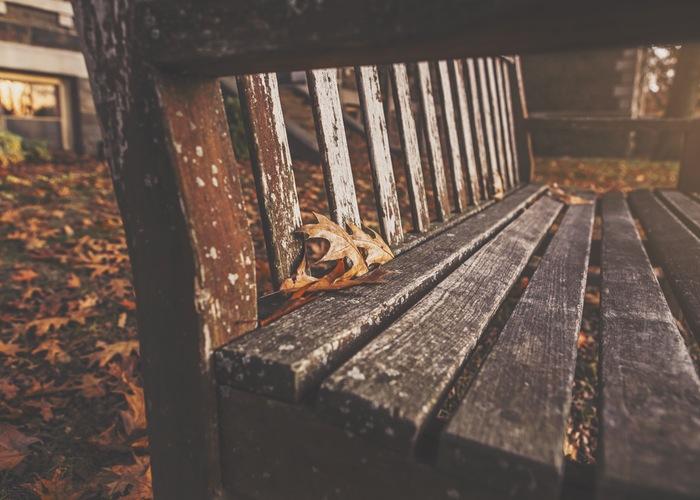 wood-bench-park-autumn