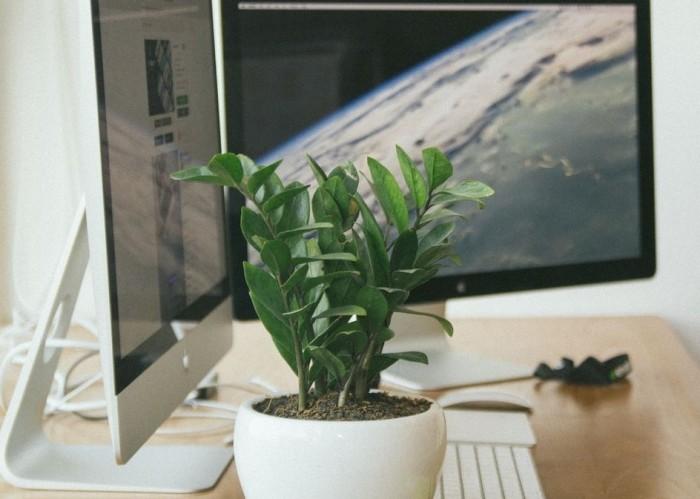 workspace-mac-main