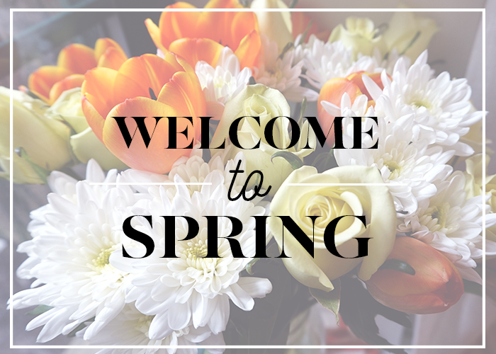 welcome-to-spring-title-card