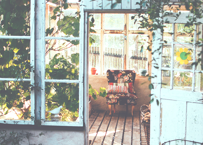 chair-in-greenhouse