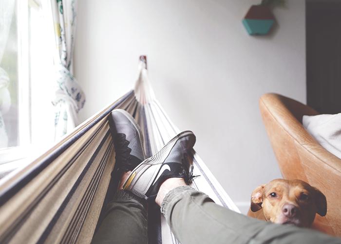 tfd_men-relaxing-fett-up-and-dog