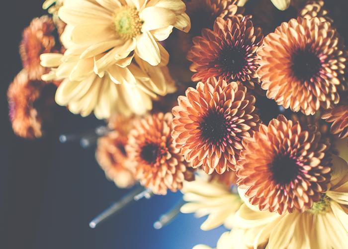 flowers-pinterest-photo